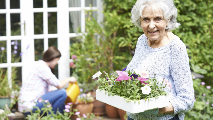 Senior Social Isolation - Elderly Woman And Young Woman Gardening