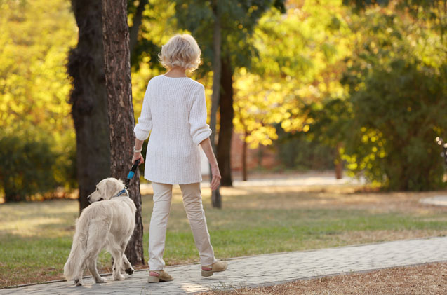 Jobs For Seniors - A Woman Walking A Dog