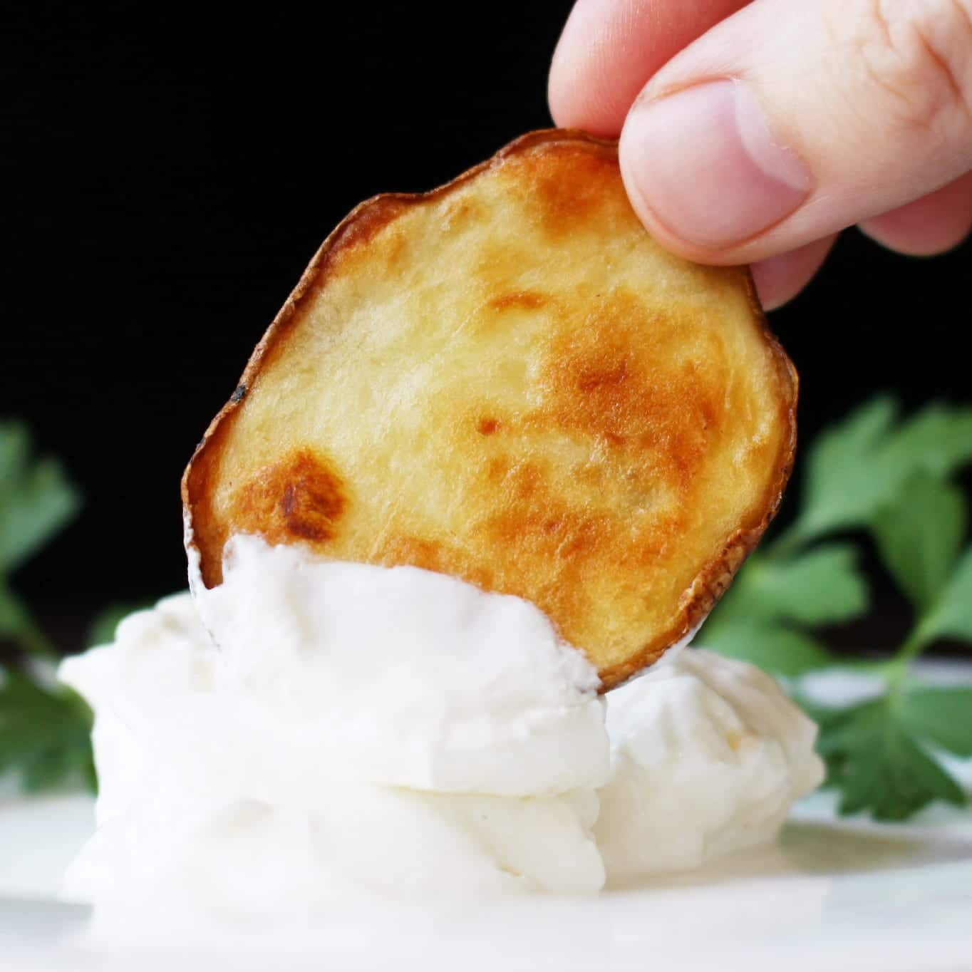 Recipes for Seniors - Oven Baked Potato Rounds