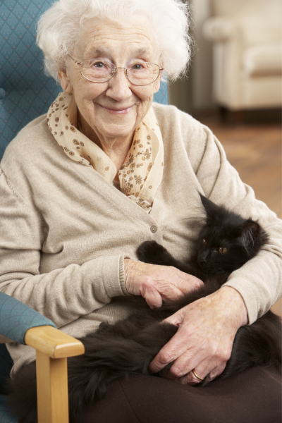 pets-for-seniors-senior-woman-holding-a-cat-in-her-lap