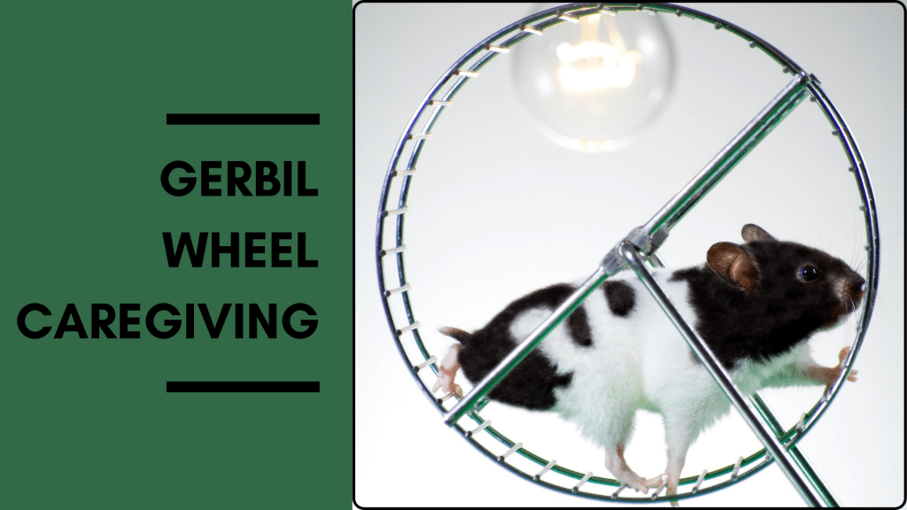 representation-of-gerbil-wheel-