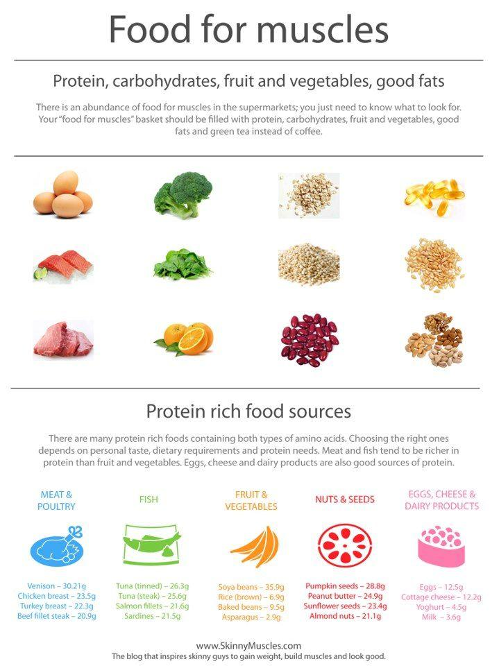 Winter Nutrition For Seniors - Foods For Muscle Health Graphic